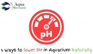 ph meter with 4 ways to lower ph in aquarium naturally lettering