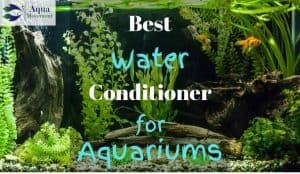 Aquarium cleared with one of the best water conditioner for aquariums