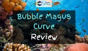 Saltwater Tank cleared with bubble magus curve protein skimmer