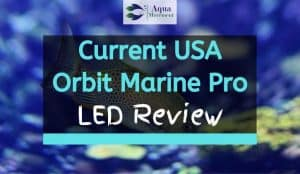 Saltwater Tank with Current USA Orbit Marine Pro LED Lighting