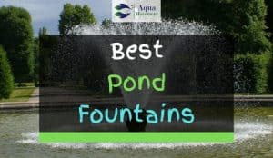 Large Pond Fountain