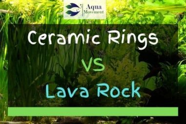 Ceramic Rings vs Lava Rocks – What Are the Differences?