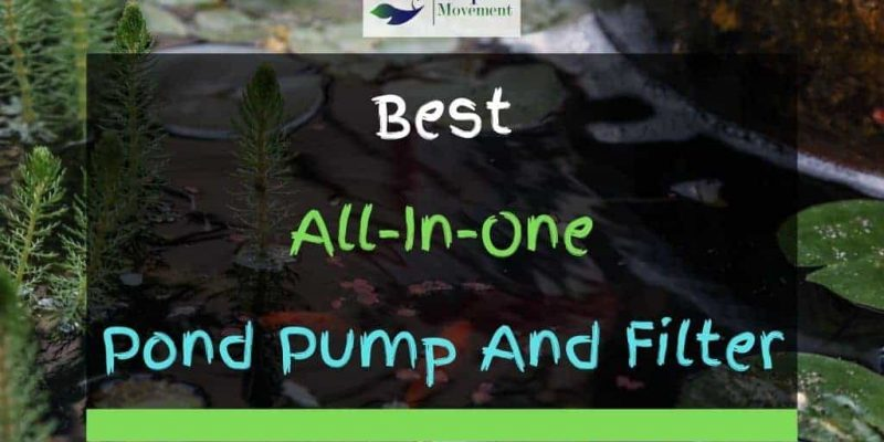 9 Best All-In-One Pond Pump And Filter in 2021