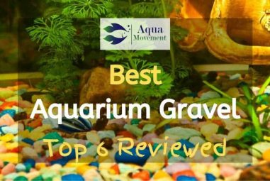 6 Best Aquarium Gravel in different Colors (including Red, Black, Blue, Yellow, and Green) Reviewed