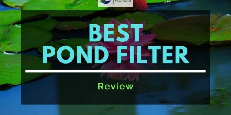 Best Pond Filters – Top 9 Review