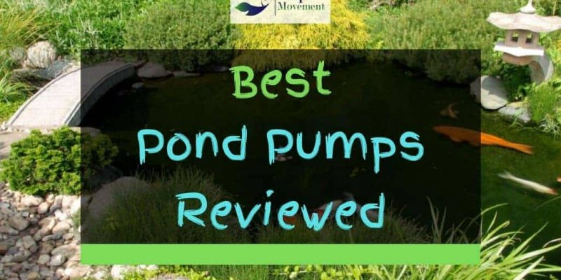 Best Pond Pumps in 2021 – Top 8 Review