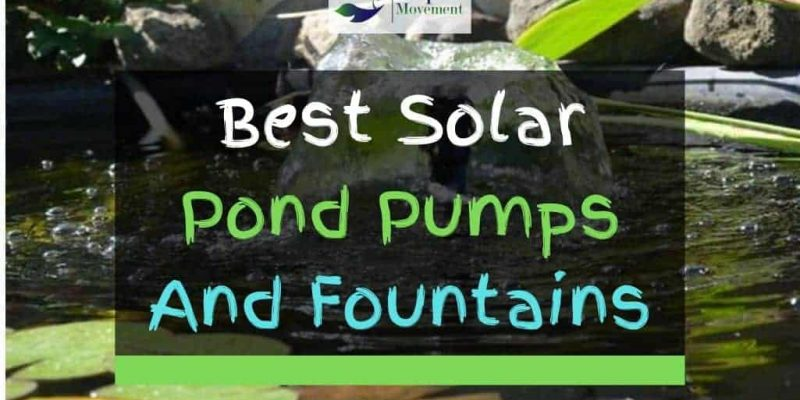 11 Best Solar Pond Pumps and Fountains