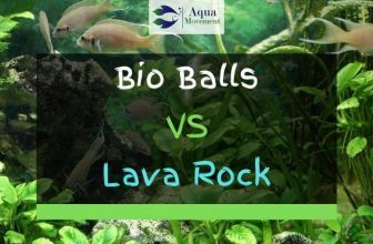 Bio Balls VS Lava Rock