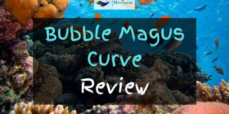 Bubble Magus Curve 5 7 9 Protein Skimmer Review