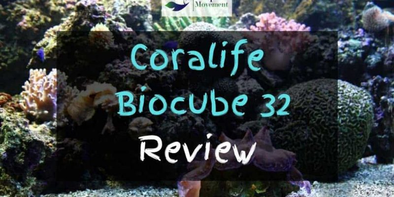 Coralife BioCube 32 Review – Worth the Money?