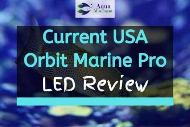 Current USA Orbit Marine Pro LED Review