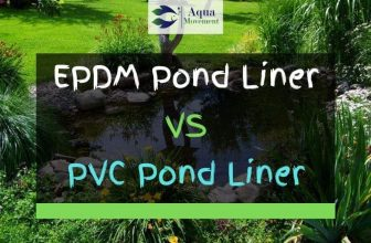 Pond Liner: EPDM VS PVC – What's The Difference?