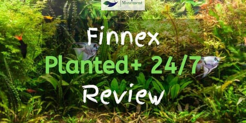 Finnex Planted Plus 24 7 Review