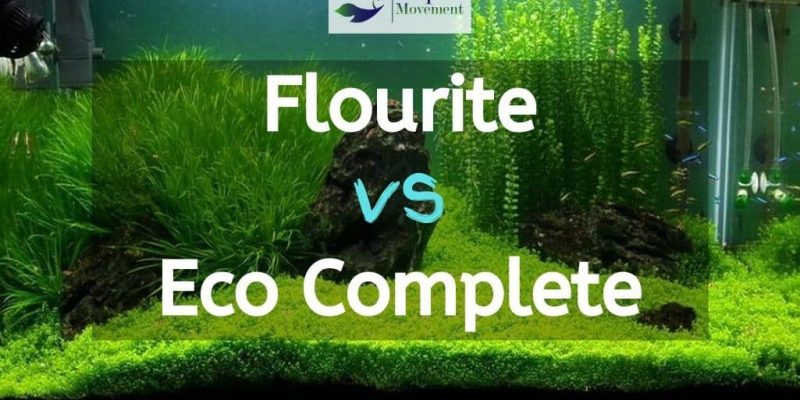 Flourite vs Eco Complete – Which one is better?