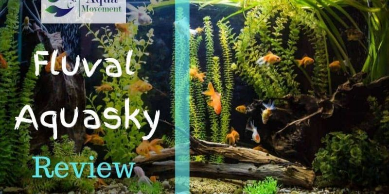 Fluval Aquasky Bluetooth LED  Review