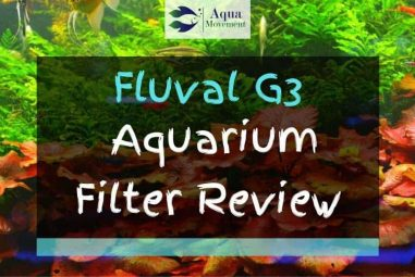 Fluval G3 Filter Review – Worth The Money?