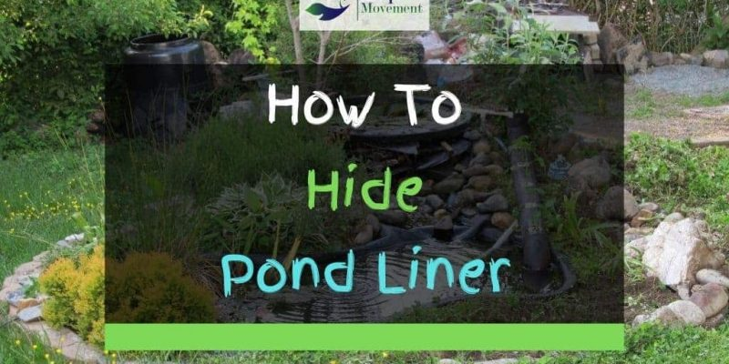 3 Ways On How To Hide Pond Liner