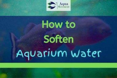 5 Ways On How To Soften Aquarium Water Naturally And Chemically