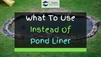 What To Use Instead Of Pond Liner? Top 7 Alternatives